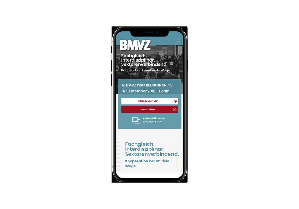 Umsetzung der Kongress-Website für den BMVZ